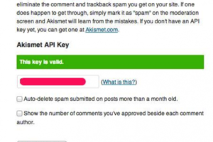Get rid of WordPress Spam with Askimet!