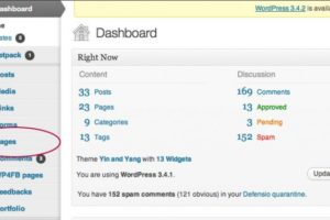 How to update the content on the PAGES of your WordPress Website